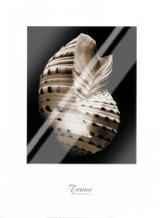 Tonna art print poster with laminate