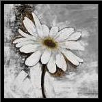 Abstract Daisy Flower art print poster with simple frame
