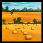 Hay Bale Fields art print poster with simple frame