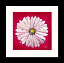 Gerbra White art print poster with simple frame