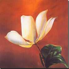 Magnolia Beauty II art print poster with block mounting