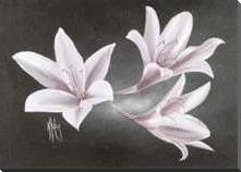 Evening Lillies art print poster with block mounting