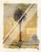 Palm Study #1 art print poster with laminate