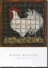 White Rooster art print poster with block mounting