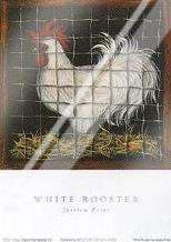 White Rooster art print poster with laminate