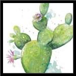 Cactus in Bloom art print poster with simple frame