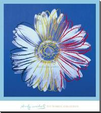 Daisy, C 1982 (Blue On Blue) art print poster with block mounting
