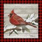 Winter Red Bird IV art print poster transferred to canvas