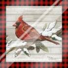 Winter Red Bird IV art print poster with laminate