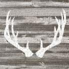 Antler Art I art print poster transferred to canvas