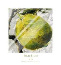 Fruit Study I art print poster with laminate