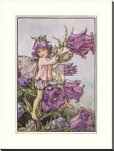 Canterbury Bell Fairy art print poster with block mounting