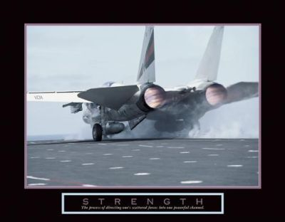 Strength - Aircraft poster print by  Unknown