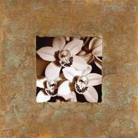 Orchids on Copper poster print by Mark Baker
