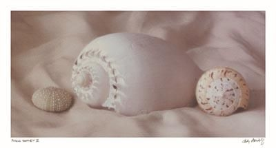 Shell Sonnet II poster print by Judy Mandolf