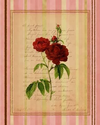 Botanical Rose III poster print by  Studio Voltaire