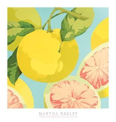 Fresh Grapefruits poster print by Martha Negley