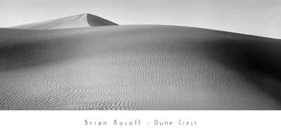 Dune Crest poster print by Brian Kosoff
