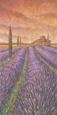Soleil De Provence I poster print by Stephen Mitchell