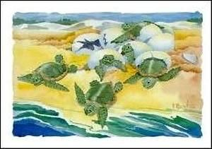 Turtle Nestings poster print by Paul Brent