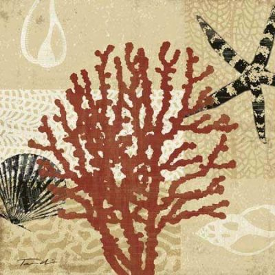 Coral Impressions III poster print by Tandi Venter