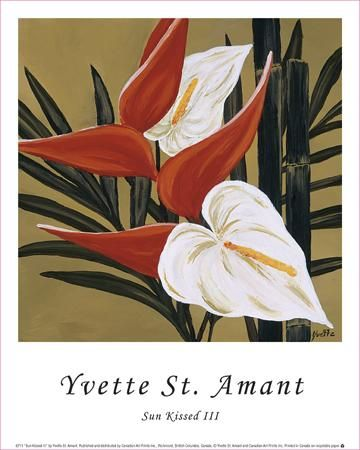 Sun Kissed III poster print by Yvette St. Amant