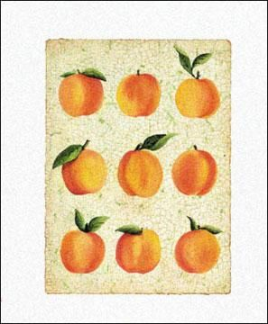 Peach Collage poster print by Angie Bridenhall
