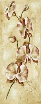 Tropical Orchid II poster print by Ruth Bush