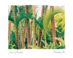 Dancing Bamboo poster print by Maureen Love