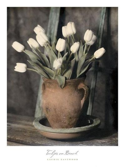 Tulips On Bench poster print by Laurie Eastwood