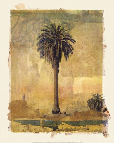 Palm Study #1 poster print by Donald Farnsworth