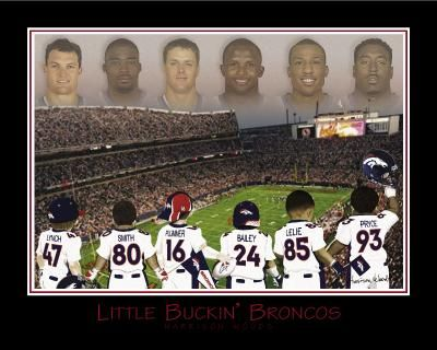 Little Buckin' Broncos-Plummer, poster print by Harrison Woods