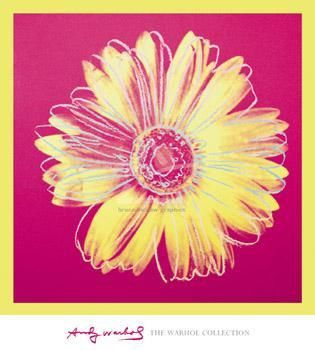 Daisy, C 1982 (Fuchsia And Yellow) poster print by Andy Warhol