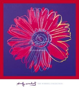Daisy, C 1982 (Blue And Red) poster print by Andy Warhol