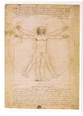 Human Proportions-Vitruvian Man poster print by Leonardoda Vinci