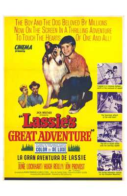 Lassie's Great Adventure poster print by  Entertainment Poster