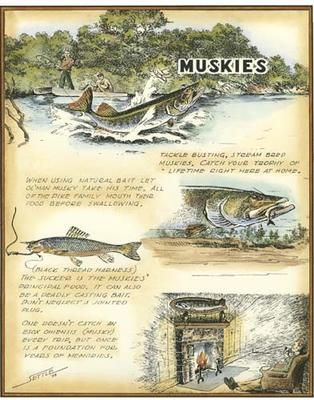 Muskies poster print by Settle Robert