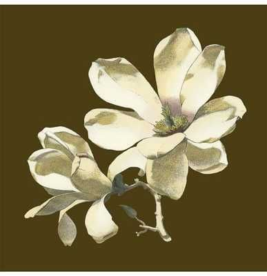 Magnolia on Taupe I poster print by  Unknown