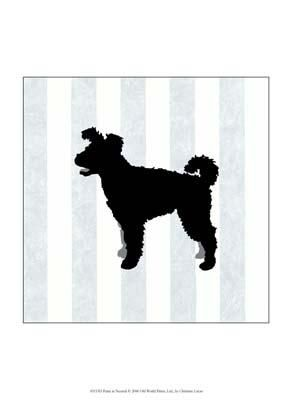 Pumi In Neutral poster print by Christine Lucas