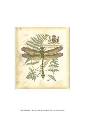 Mini Regal Dragonfly III poster print by  Vision Studio