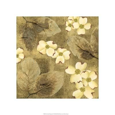 Sun-Kissed Dogwoods I poster print by Nancy Slocum