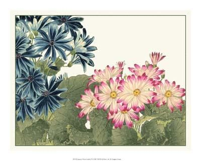 Japanese Flower Garden IV poster print by Konan Tanigami