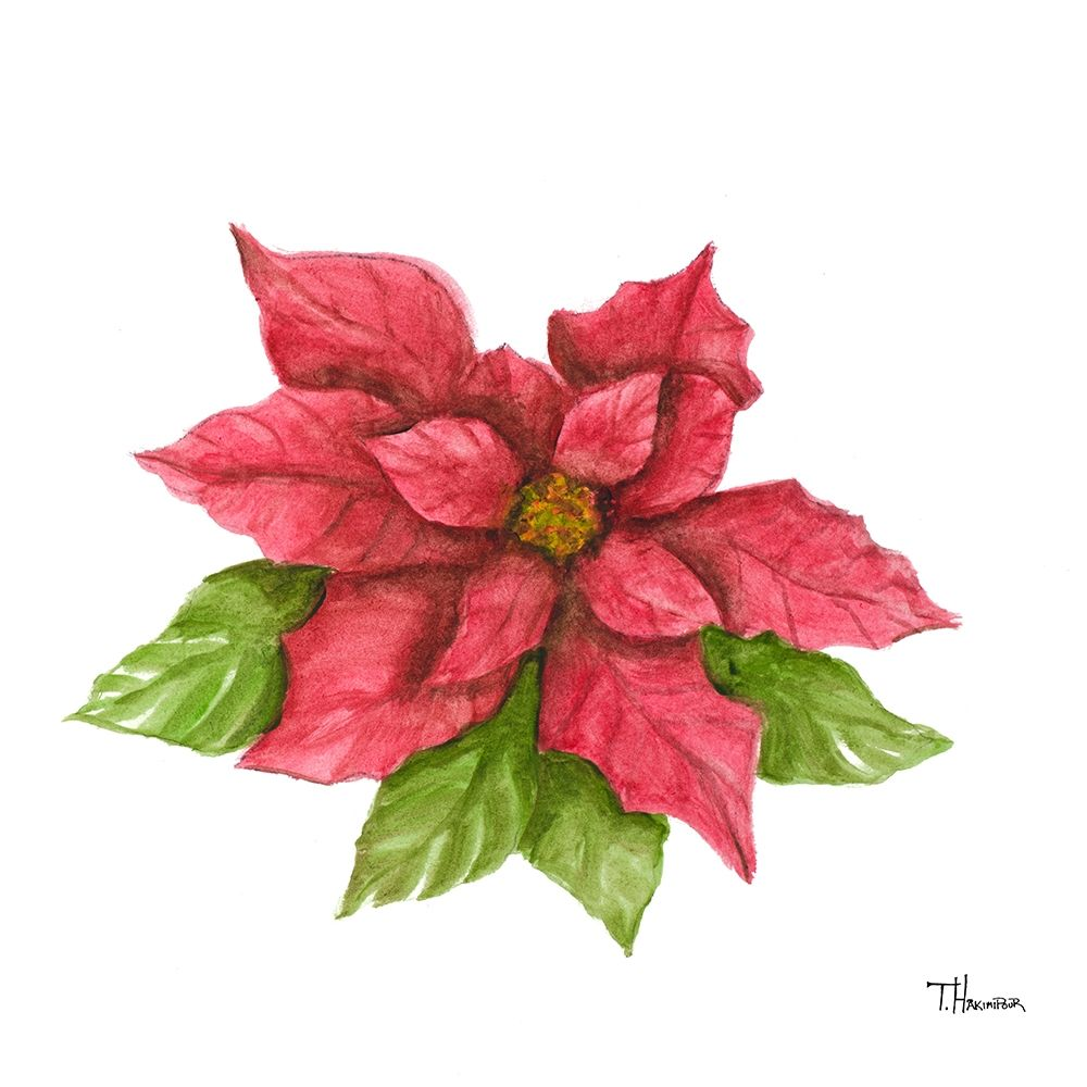 Poinsettia I poster print by Tiffany Hakimipour