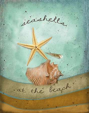 Seashells poster print by Beth Albert