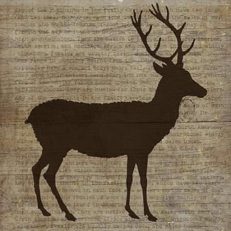 Deer poster print by Beth Albert