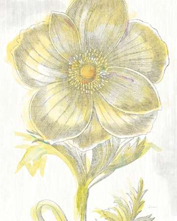 Belle Fleur Yellow II Crop poster print by Sue Schlabach