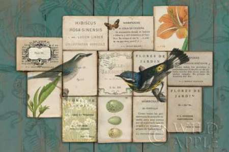 Birds of the Garden poster print by Sue Schlabach