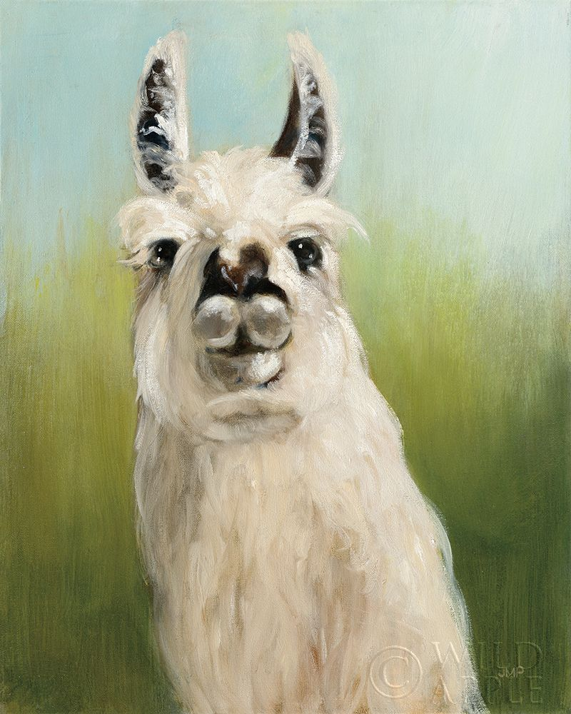 Whos Your Llama I poster print by Julia Purinton