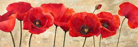 Red Poppies poster print by Cynthia Ann