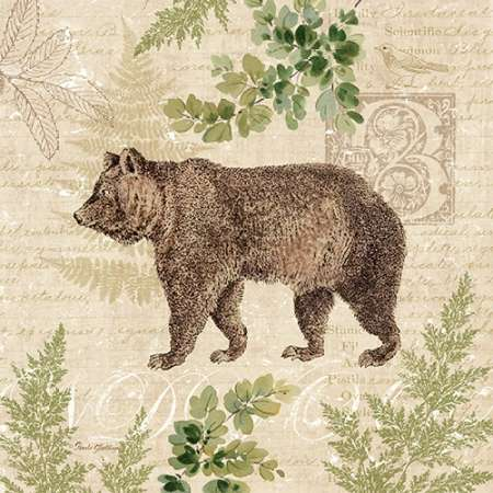 Woodland Trail II - bear poster print by Pamela Gladding